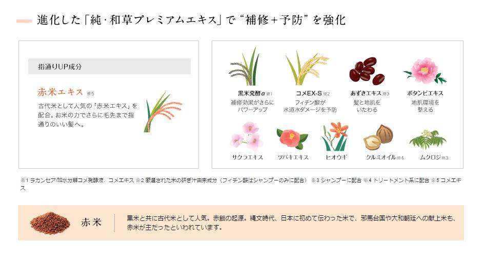 Bộ dầu gội thảo dược Kracie Ichikami Smoothing hàng nhật nội địa xách tay