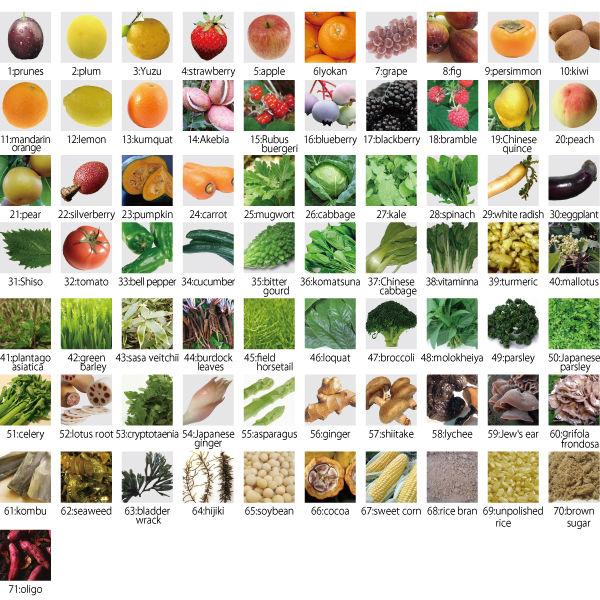 71 loại thực vật lên men có trong tinh chất nhau thai Dr Select Placenta 300000
